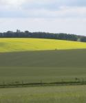 stonehenge hills