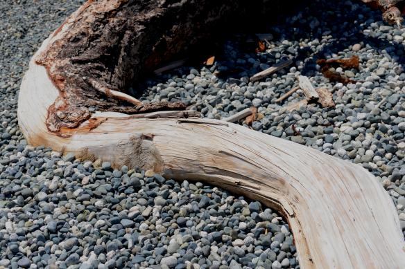 wood curve