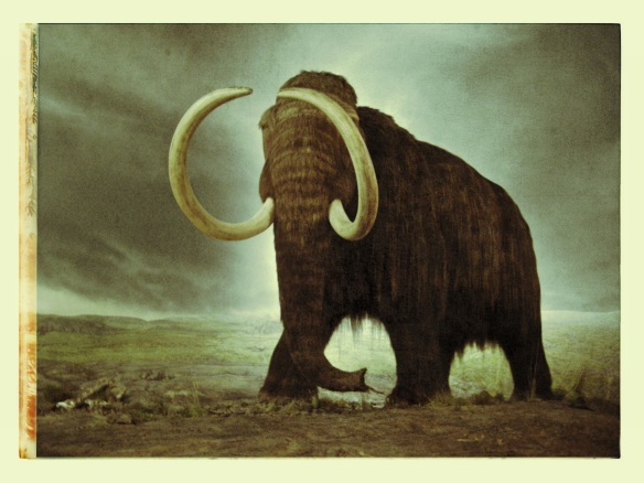 time mammoth