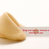 Fortune Cookie 16