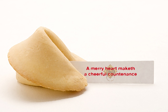 fortune cookie 20
