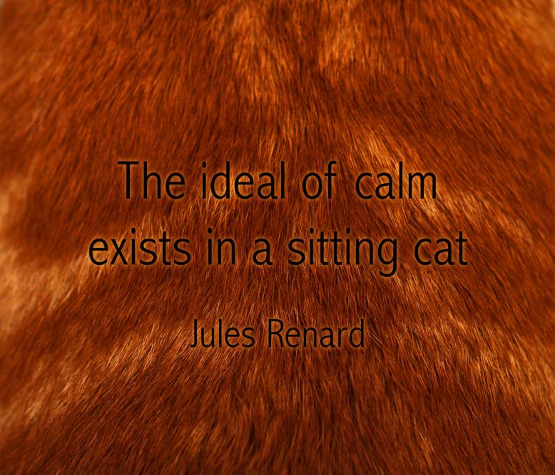 renard quote