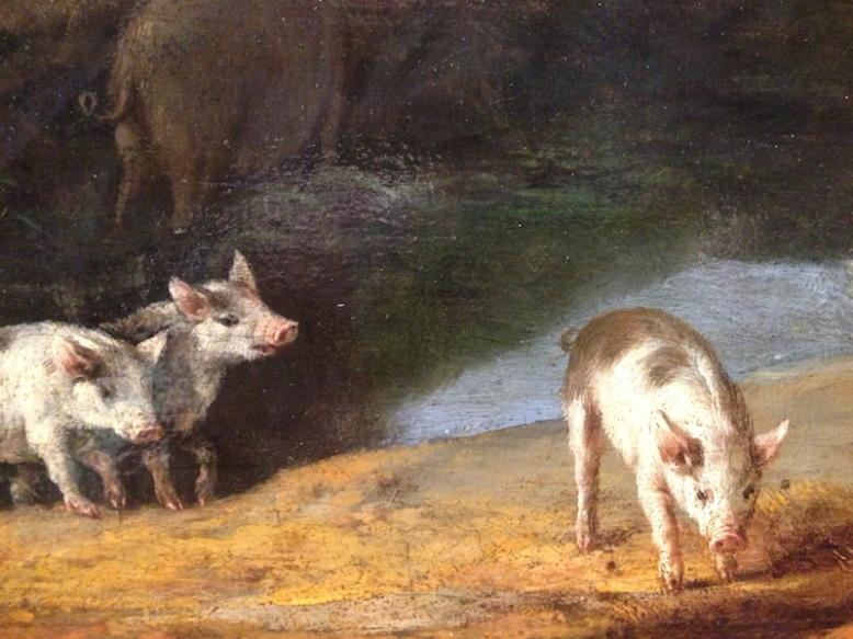 tagged s swine