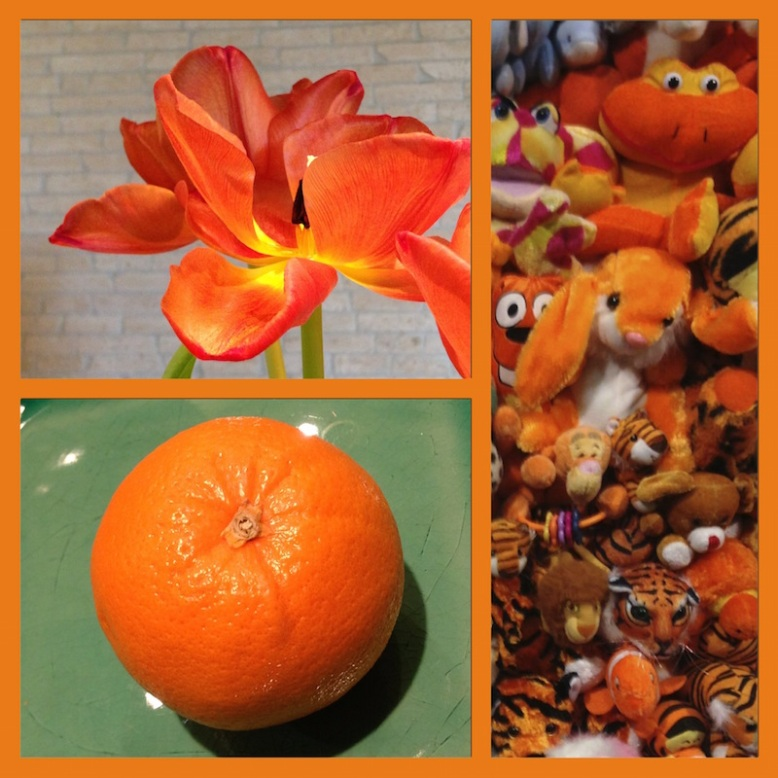 collage of orange photos