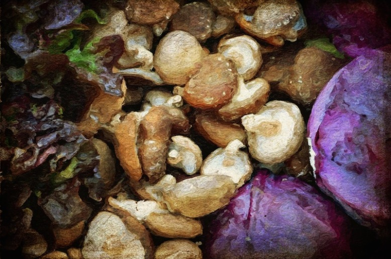 painterly mushrooms, lettuce and cabbage